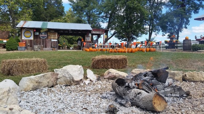 Best of the Best: Pumpkin Patches