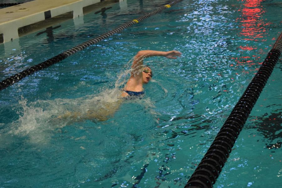 Girls Swim; from Sisterhood to State