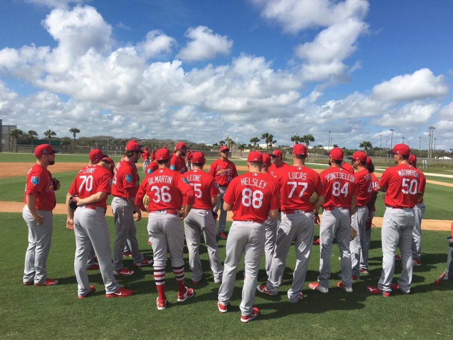 Cardinals Spring Into Action
