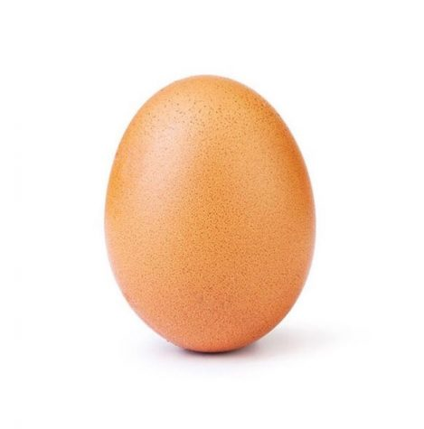 The Egg Takes Over The Internet