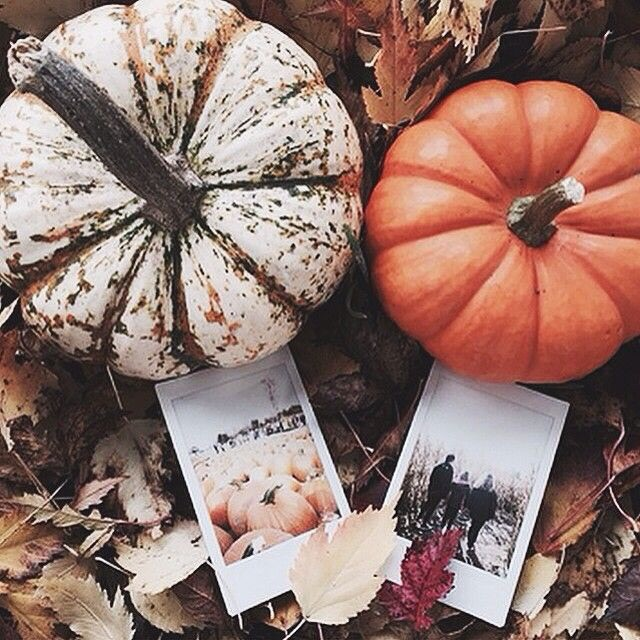 Happy Fall Y'all: 2019 Fall Bucket List