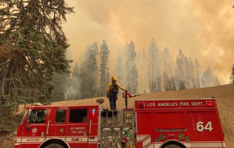 Firefighters across the west coast are trying their best to contain the wildfires