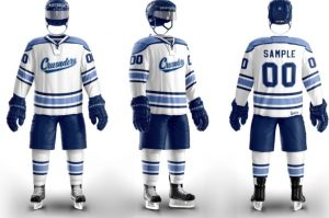 The St. Dominic Athletic Department is welcoming a hockey team this next school year!