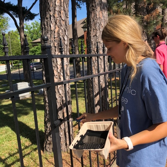 Claire Donnelly painting St. Joseph's cemetery fence